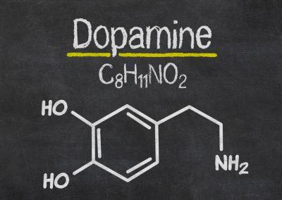 Meet Your Dopamine Reward System
