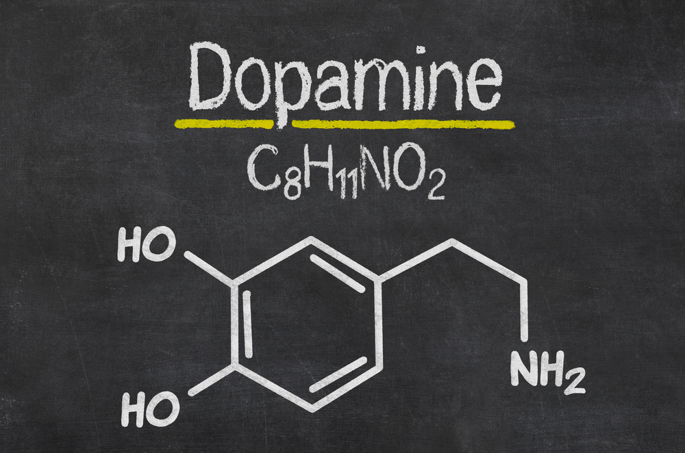 dopamine reward system