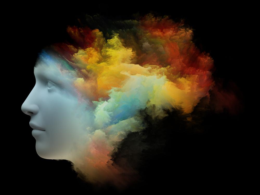 lsd in the brain