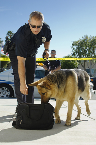 How Police Respond to Cases of a Drug Overdose