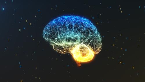 5 Ways to Heal Your Brain